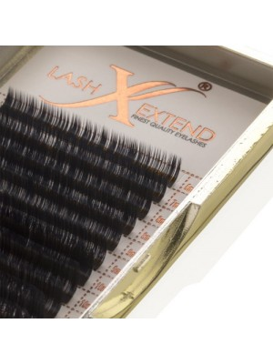 Premium Natural Silk Lash L+ Curl, 8-16, 0.07 mm